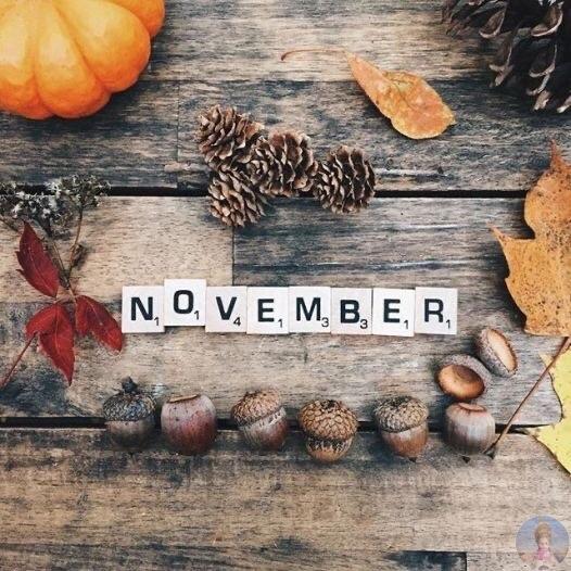 Привет, Ноябрь!