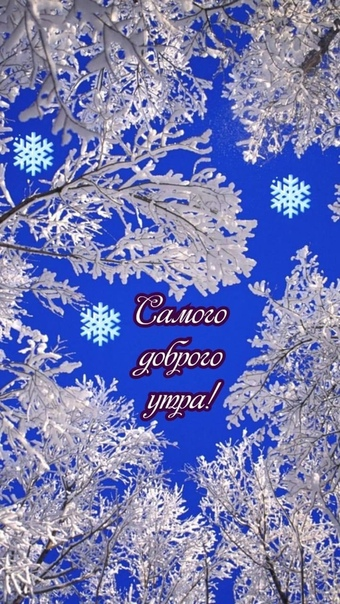 Обои На Телефон 480х800 Зима