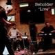 Beholder - Falsehoods and Shade (Live)