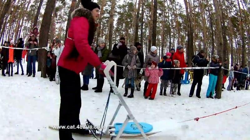 6 Winterdogfest Winter dog fest 2019 Песочин 10022019 собаки зимнии забавы