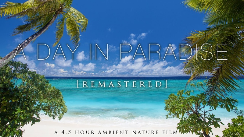 A Day In Paradise (No Music) 4.5 Hour Pure Nature Relaxation Film - Fiji HD [Remastered 4K]
