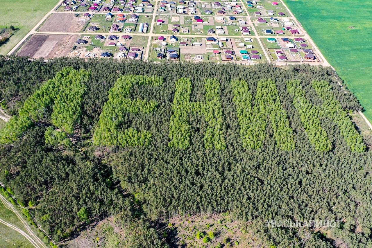 Имя Ленина высадили деревьями много лет назад. Вот как это выглядит сейчас