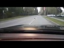 Это просто невероятно Ворон спасает ежа на автотрассе!