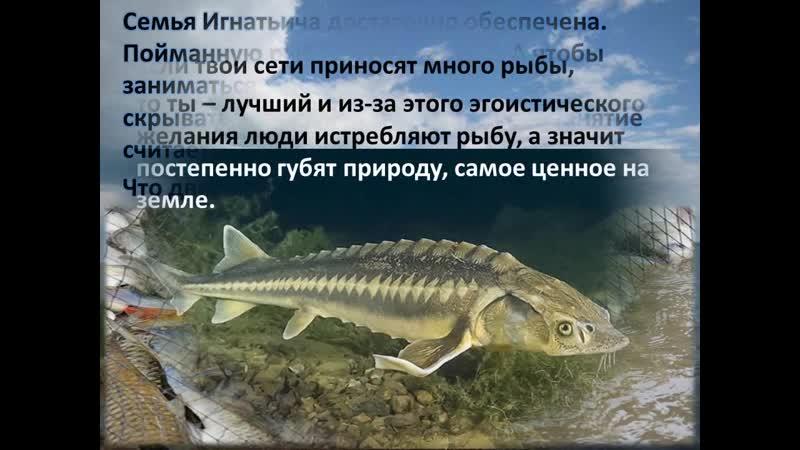 Буктрейлер по книге В Астафьева Царь - рыба
