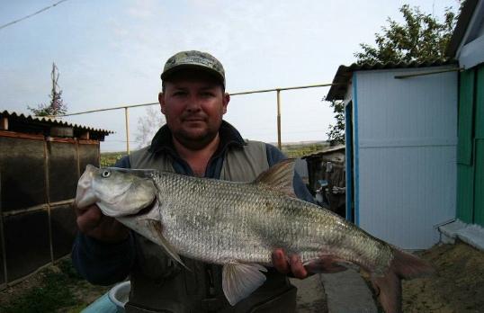 Рыбалка на хопре в урюпинском районе