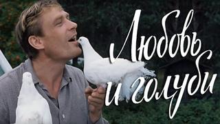 Любовь и голуби (FullHD, комедия, реж. Владимир Меньшов, 1984 г.)