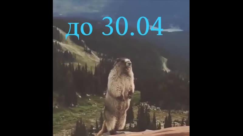 VIDEO 2020 04 02 18 51