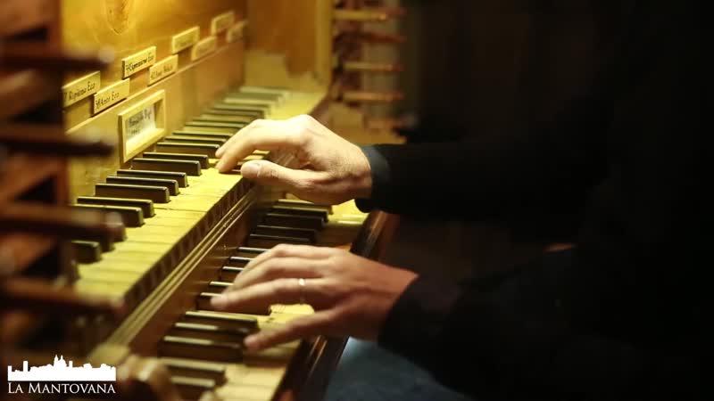 804 J. S. Bach Duetto III in G major BWV 804 Stefano Molardi organ