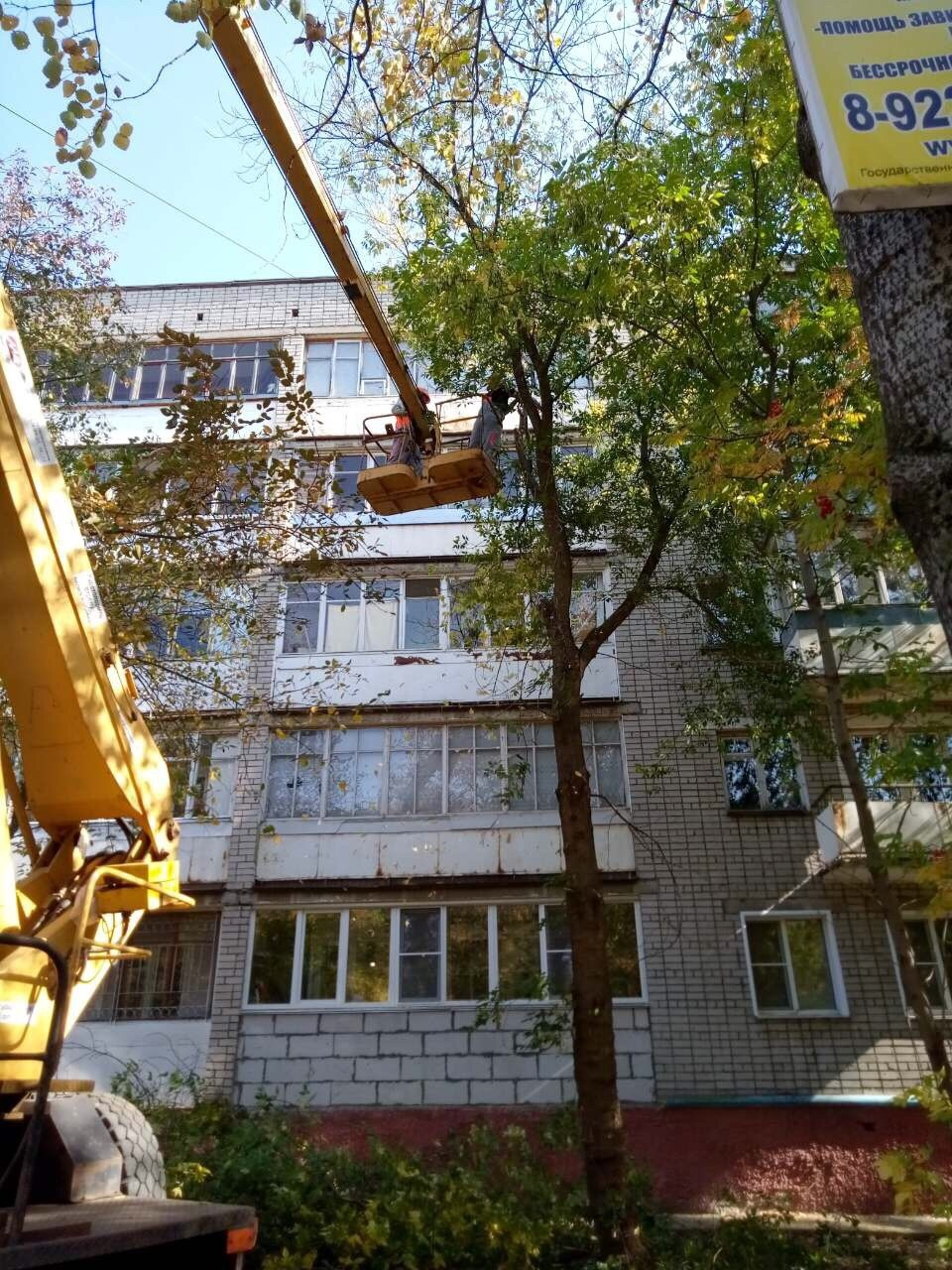 Улица Широнинцев дом 13 снос аварийных деревьев