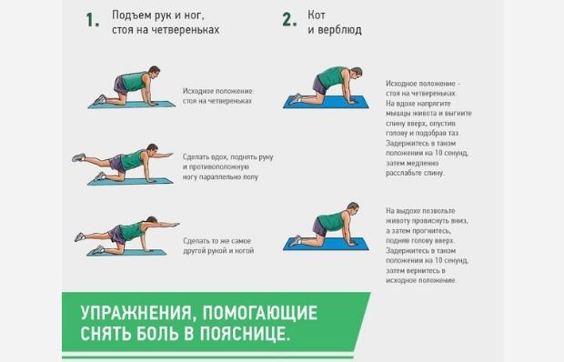 Упражнения, которые помогут снять боль в пояснице, изображение №1