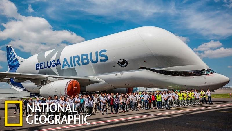 Суперсооружения Аэробус Beluga XL