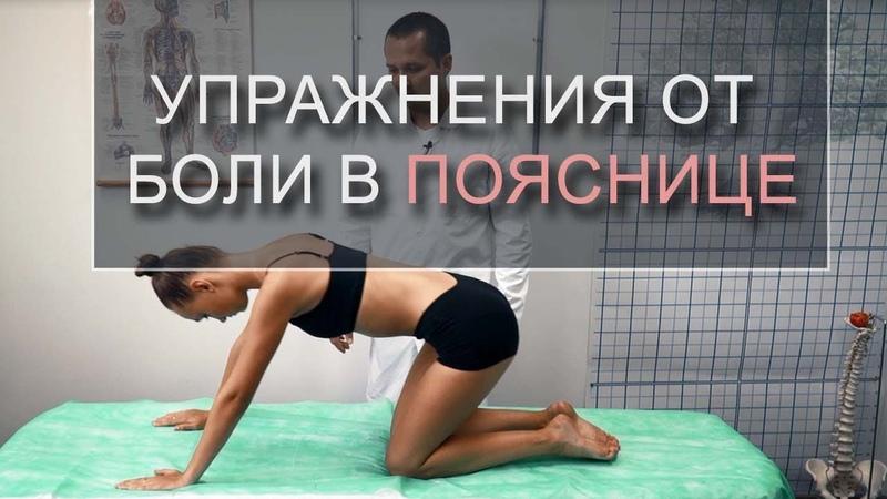 Упражнения при боли в пояснице зарядка от межпозвоночной грыжи в пояснице Игнатьев Радион