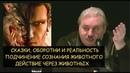 Н.Левашов: Оборотни и реальность. Подчинение сознания животного, управление животными