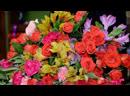 БСТ Матрёшка Праздник к нам приходит Цветочная феерия