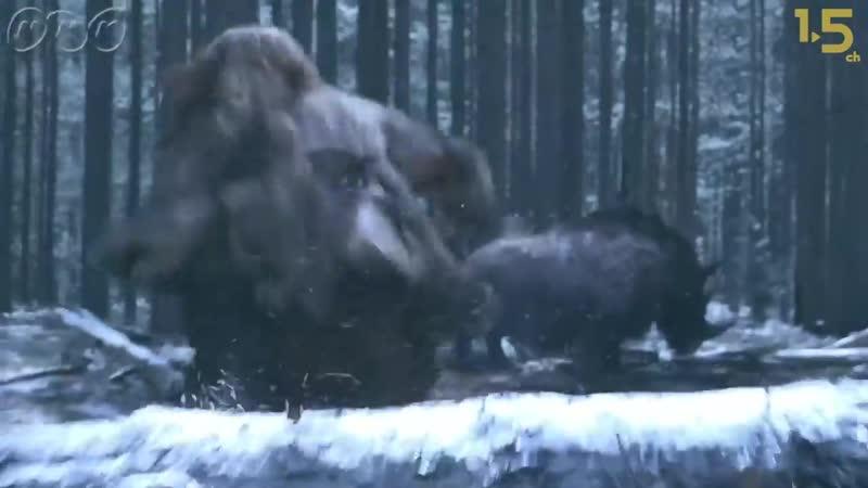 【人類誕生CG】5万年前 ネアンデルタール人 vs. 巨大生物【NHKスペシャル×1.5ch】Neanderthals versus Mighty Creatu