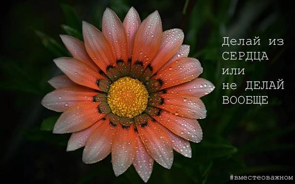 Если есть страх ошибиться  значит есть много ожиданий и соответственно претензий к себе