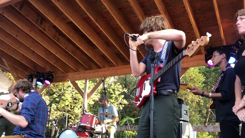 Woods Kevin Morby more cover Purple Mountains at Woodsist Fest David Berman tribute
