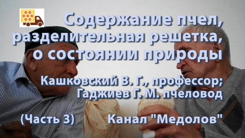 Содержание пчел, разделительная решетка, о состоянии природы Кашковский В. Г., Гаджиев Г. М.