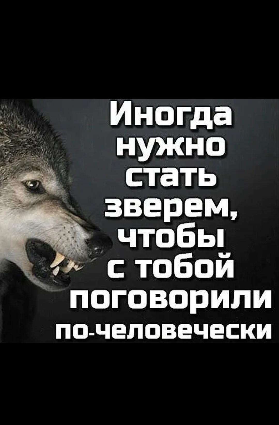 Arman, 28, Krasnoyarsk