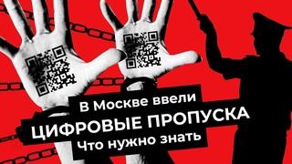 Пропускной режим в Москве: как это будет работать?