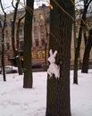 Фотоальбом Анны Игнатьевой