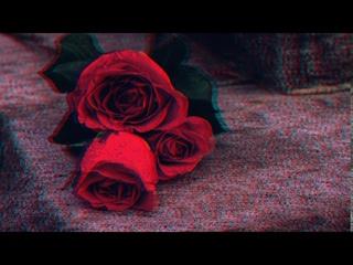 Ислам Итляшев Она любила розы (2020)