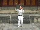 Ката с саями школы Юнчунь Байхэ цюань Фукенский Белый Журавль Fukien Wing Chun White Crane Yong Chun Bai He Quan