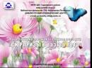 Информационный обзор 3-х праздников начала второго летнего месяца в биб-ке им.П.И.Мельникова-Печерского г.Н.Новгород 2 июля 2020
