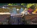 Прогулка в красноярский парк Сады мечты