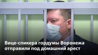 Вице-спикера гордумы Воронежа отправили под домашний арест за мошенничество