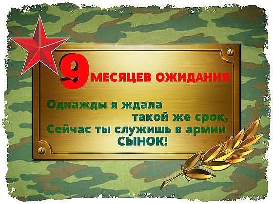 касается поздравления отслужившему в армии волгоградской области