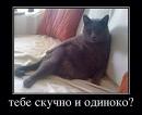 Фотоальбом Эльвиры Лутфуллиной