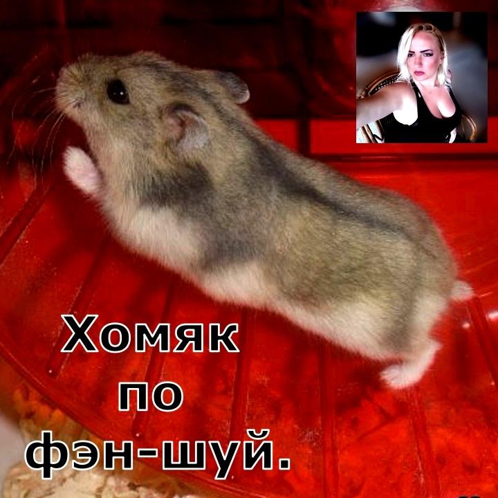 глиф - Online Школа Магии Елены Руденко ( беЗоплатное обучение ). - Страница 5 FhWwJ58eM0E