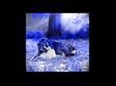63124057_video_11-wap_sasisa_ru.3gp