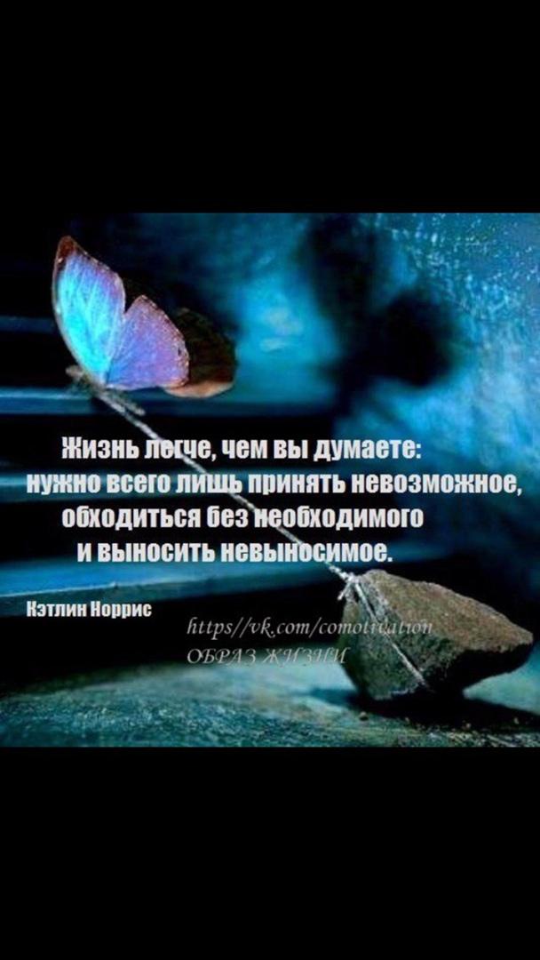 фото из альбома Ольги Беркут №13