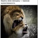 Trey Анатолий | Кривой Рог | 4