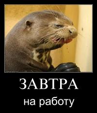 Анна Баранова фото №9