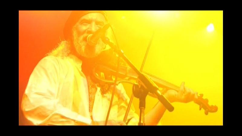 GOGOL BORDELLO Not A Crime Не Преступление Live From Axis Mundi USA 2009 г