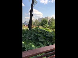Video by Tatyana Shigina