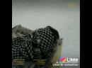 Like_6794249138836977867.mp4