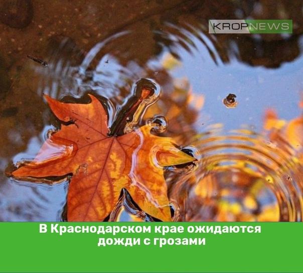 В Краснодарском крае ожидаются дожди с грозамиВ К...