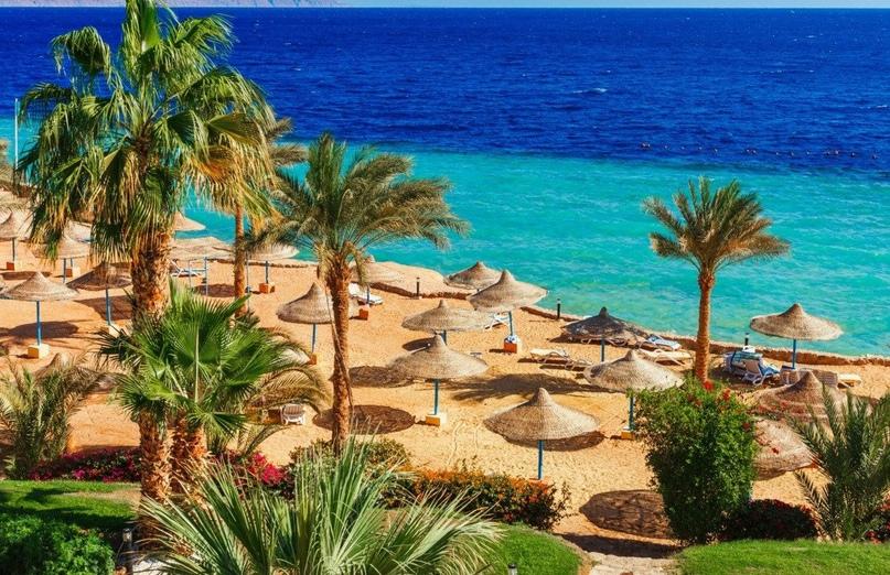 В Египте появятся два новых туристических города