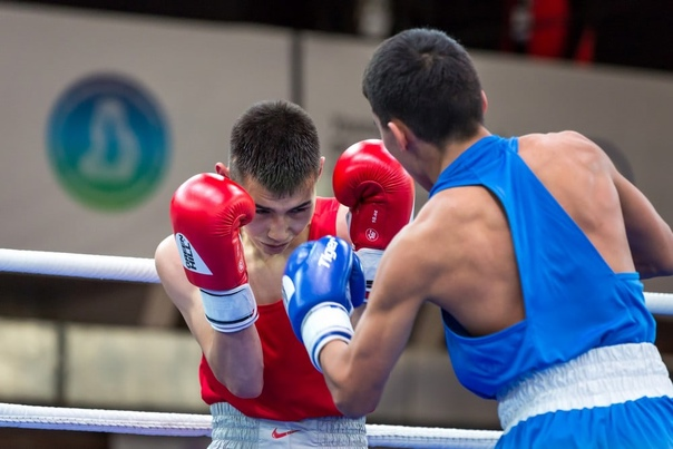 Бокс. Первенство России (юниоры 17-18 лет). В Барнауле юниоры разыграют 10 комплектов медалей0