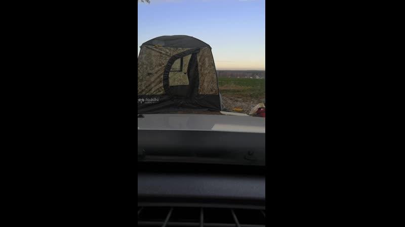 палатка мобиба