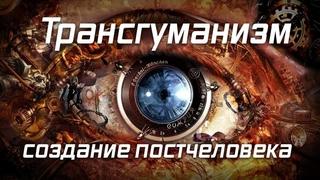Ольга Четверикова. Они ведают, что творят: оцифровка человека