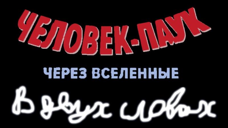 """""""Человек-Паук: Через Вселенные"""" в двух словах"""
