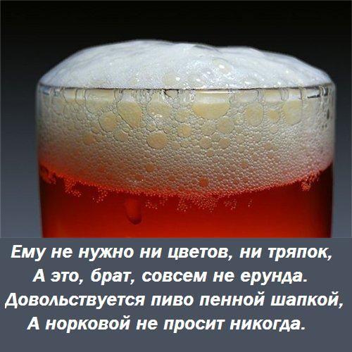 выбор, пиво картинки смешные среда фотокниг хабаровске адреса