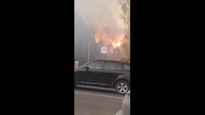 У Бреста разгорелся сильный лесной пожар