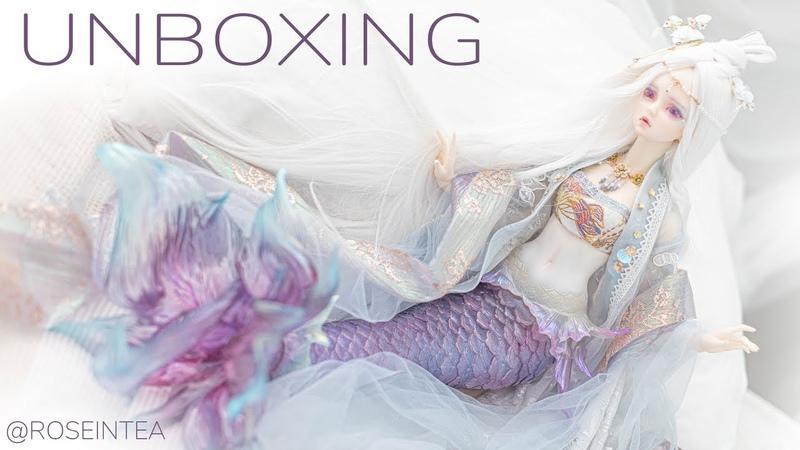 BJD Angell Studio ASDOLL Lesser Snow Mermaid Unboxing Box Opening