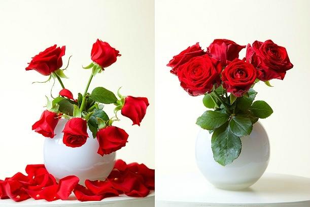 Как сохранить цветы в вазе? Какие способы действительно работают, изображение №2